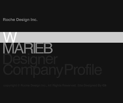 PC Webデザイン Roche Design