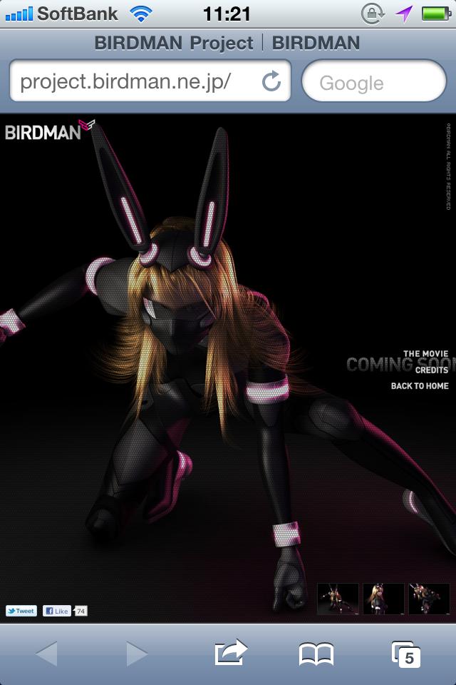 BIRDMAN Project