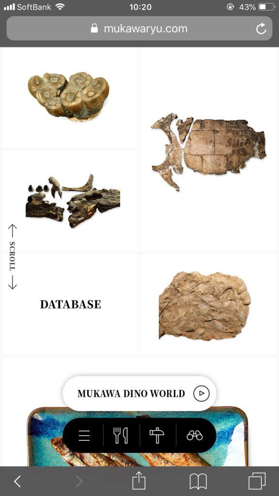 むかわ町 恐竜ワールド 【公式サイト】 | MUKAWA DINO WORLDのサイト
